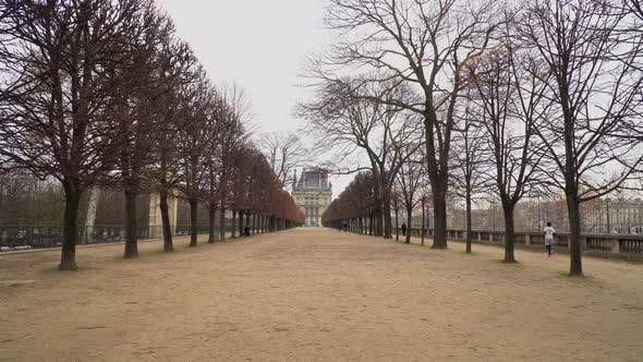 Thumbnail for Alley In Tuileries Garden