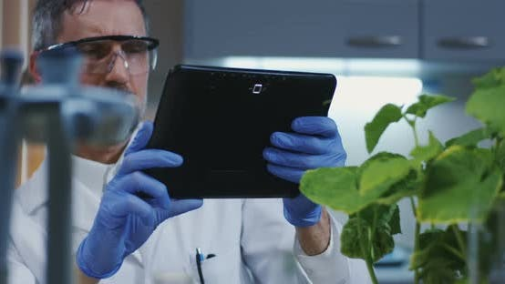 Thumbnail for Scientist Taking a Photo of Green Plant