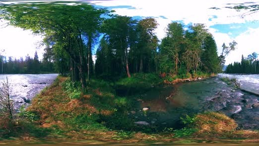 Thumbnail for 360 VR Virtual Reality of a Wild Forest. Pine Forest, Small Fast, Cold Mountain River