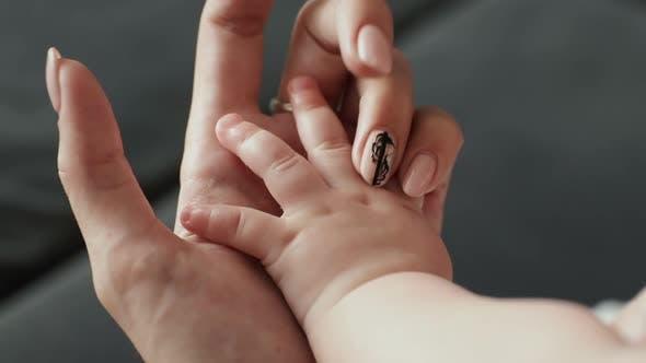 Parent Holding Babys Hand. Newborn Baby Hand in Mother Hand