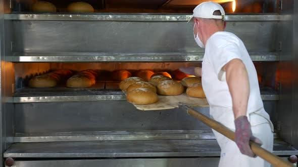 Chef entfernt frisch gebackene Backwaren aus dem Ofen, gebackenes Brot wird aus dem Ofen genommen