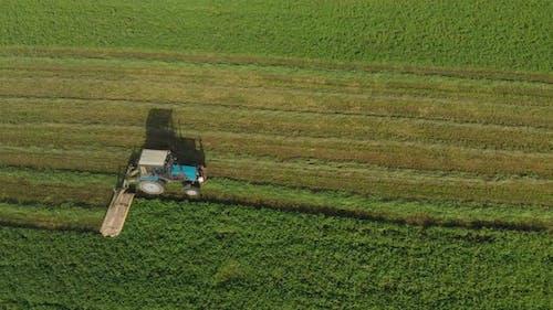 Bauer auf einem Traktor mäht das Gras für Tierfutter