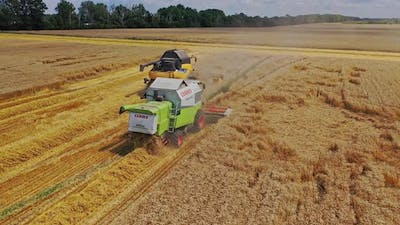 Aerial view of combine harvesters. High angle shot of harvesters working in the field