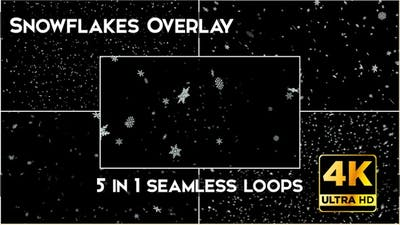 Snowflakes Overlay