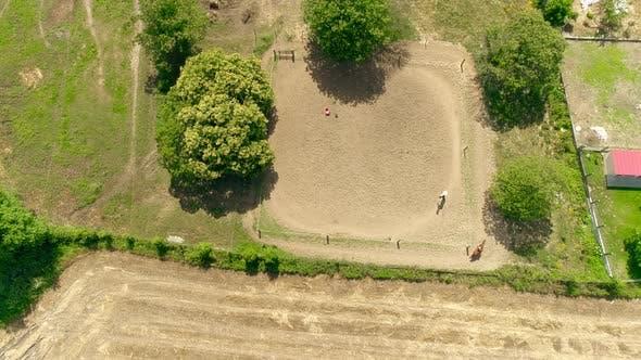 Equestrian School Top View