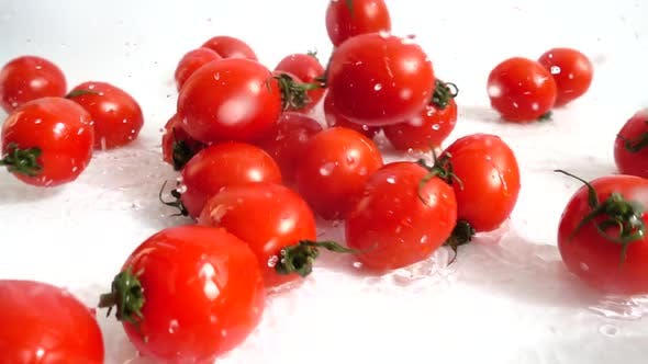 Cover Image for The Fall of Cherry Tomatoes 3