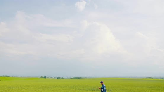 Thumbnail for Farmer Examining Agriculture Field on Farm