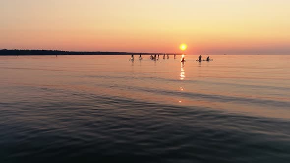 Thumbnail for Sup Surfers on Sea at Sunset