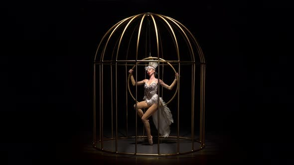 Thumbnail for Graceful Girl in Bird Costume Riding a Hoop in a Cage on the Stage