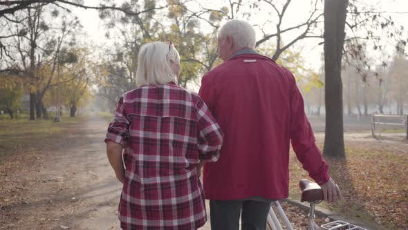 Thumbnail for Back View of Mature Caucasian Couple Walking Along the Alley in the Park. Happy Retired Senior