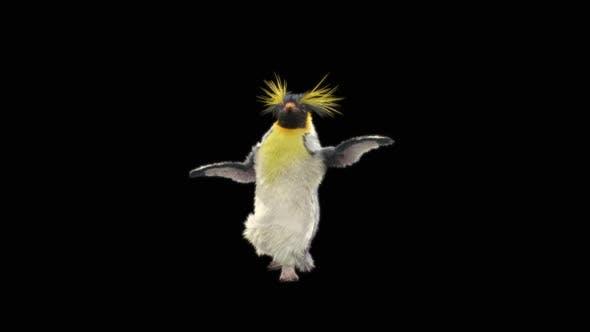 Penguin Dancing HD