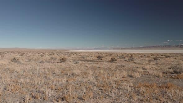 Desert Scene in North America