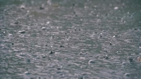 Thumbnail for Large Drops of Rain Fall in a Puddle During a Rainstorm. Water Drops in Slow Motion.