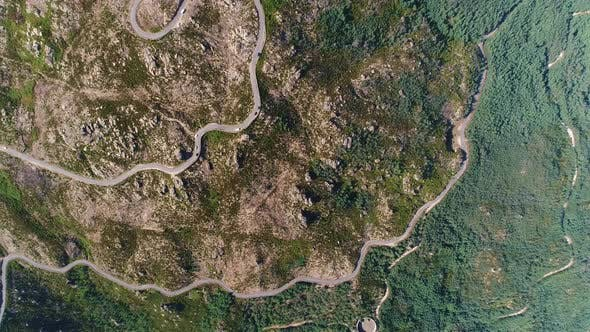 Mountain Road or Curved Serpentine in the Forest with Cars Traffic and High Green Trees