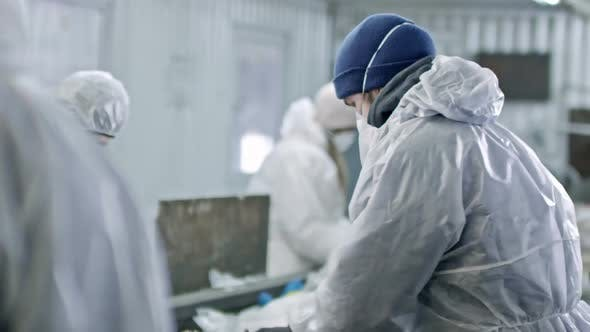 Workers in Protective Coveralls Sorting Plastic Waste