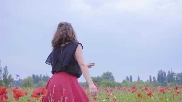 Thumbnail for Pretty Young Girl Running and Dancing in a Poppy Field Smiling Happily