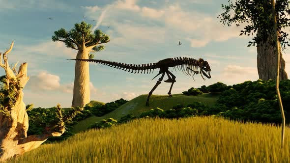 Amazon Forests and Dinosaur Skeletons