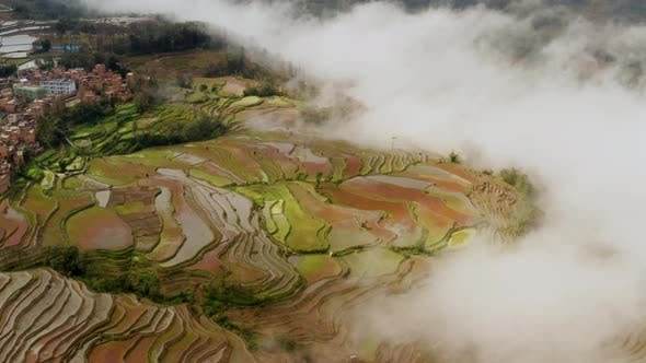 Thumbnail for Aerial shot of the famous terraced rice fields of Yuanyang County China
