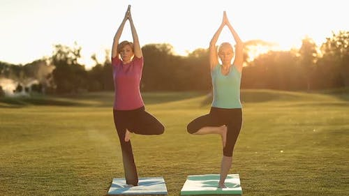 Charming Adult Women Standing in Yoga Tree Pose