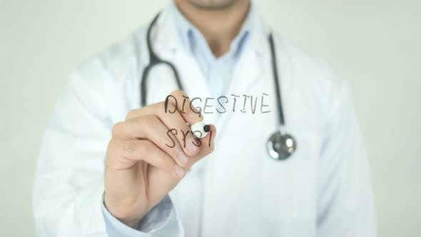 Thumbnail for Digestive System, Doctor Writing on Transparent Screen