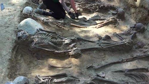 Massengrab oder archäologische Ausgrabungen