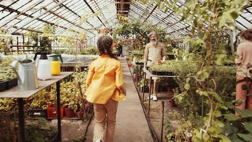 Little Girl Running and Hugging Happy Granddad in Greenhouse