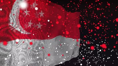 Singapore Flag Particle Animation