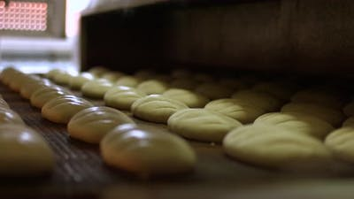 Baking of Bread. Manufacture of Bread
