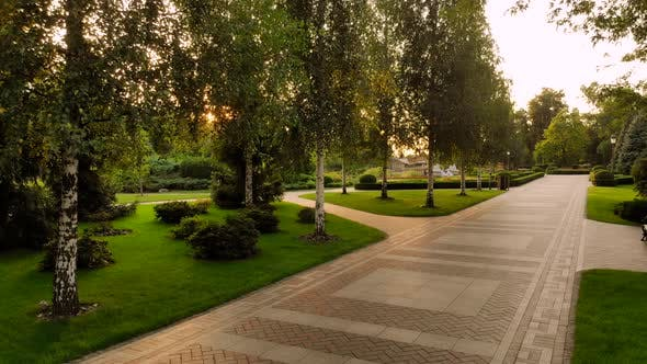 Cobblestone Pathway in a Park