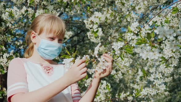 Sad Child in a Mask Is Admiring a Flowering Tree. Allergy Problems