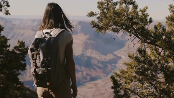 Thumbnail for Slow Motion Back View Happy Tourist Woman Hiking, Taking Smartphone Photo of Epic Grand Canyon Park