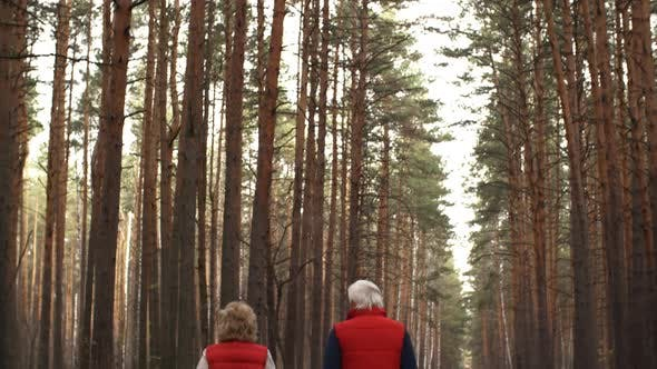 Thumbnail for Active Elderly Couple Running in Woods