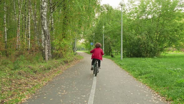 Young Boy Cycling on Bicycle on City Park Pathway at Summer Day Rear View