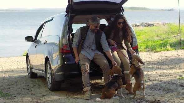 Thumbnail for Couple Sitting in Car Trunk and Giving Treats to Dogs