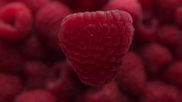 Closeup of Raspberry Rotating and Falling To Raaspberry Background