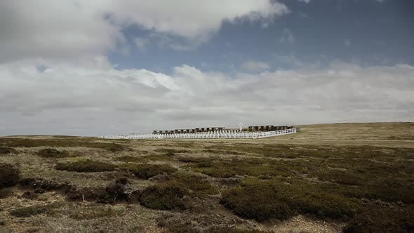 Thumbnail for Argentine Cemetery at Darwin in the Falkland Islands.