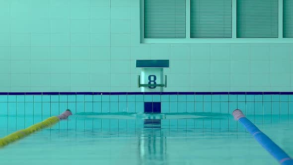 Young Girl Swimmer, That Jumping and Diving Into Indoor Sport Swimming Pool.
