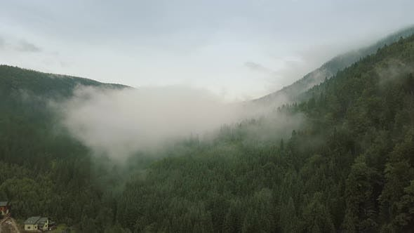 Mystic and Big Foggy Drone Flight Over the Rainforest in Mountain. Panorama View