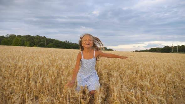 Thumbnail for Schönes glückliches Mädchen mit langen blonden Haaren, die zur Kamera durch Weizenfeld laufen. Kleines Lächeln