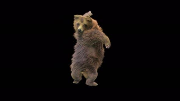 173 Bear Hand Club Combo 4K