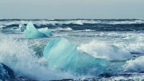 Icebergs and Seagulls at Diamond Beach