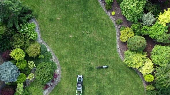 Routine Grass Mowing In Summer.