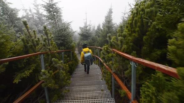Filmmusik einer Person, die die Treppe hinunter in den Bergen geht