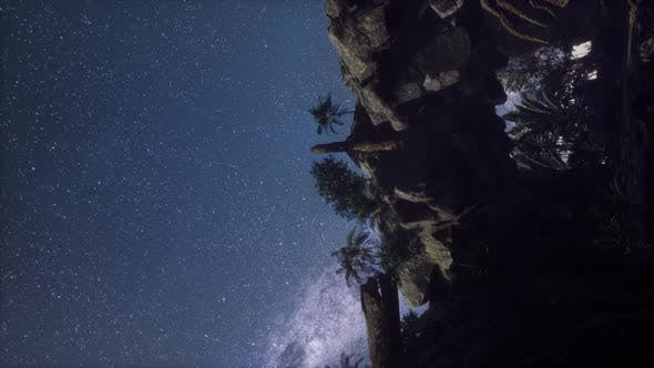 Thumbnail for Astrophotography Star Trails Over Canyon