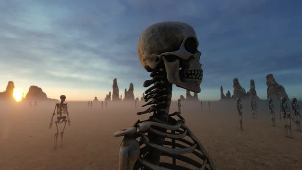 Thumbnail for Skeleton