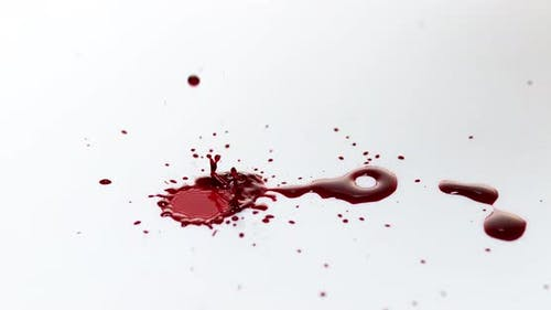 900094 Blood Dripping against White Background, Slow Motion 4K