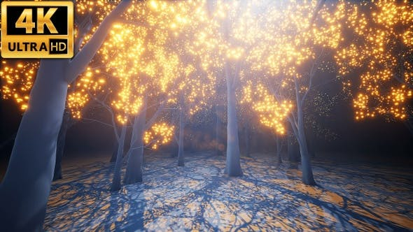 Cover Image for Glow Light Forest 4k