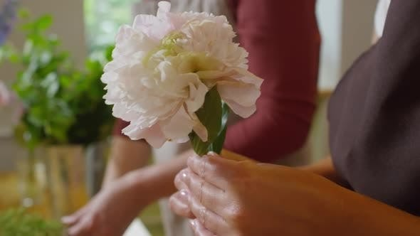 Thumbnail for Florist stripping leaves off peony flower