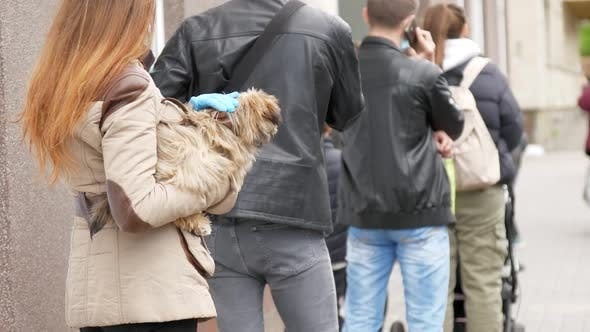 Thumbnail for Brünette in Einweg-Maske und Handschuhe hält Hund in der Warteschlange