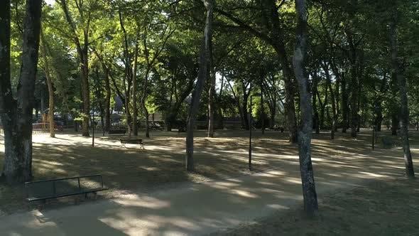 Thumbnail for Desert City Park. Covid-19